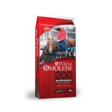 Purina Horse Feed - 50lbs